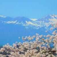 福島市花見山からの雪うさぎ