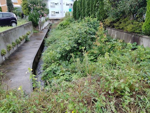 河川周辺除草の要望箇所